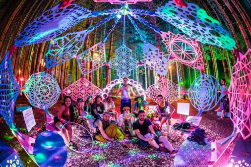 interactive art installation- electric forest